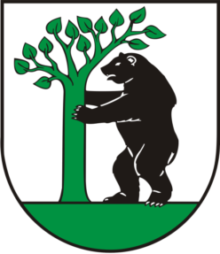 cropped-precin-logo